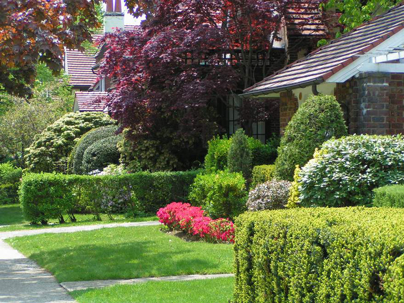 Garden design and layout InvestConsult