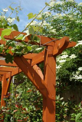 lanscaping garden bbq