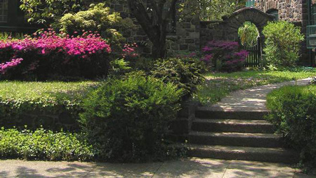 paths landscaping - steps