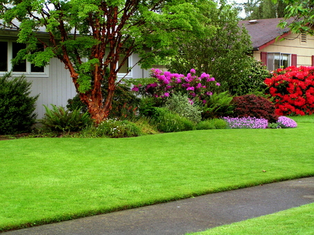 The lawn requires lots of effort and maintenance
