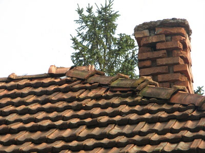 Tile roof replacement cost